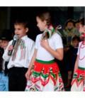 Satín Tricolor Patria